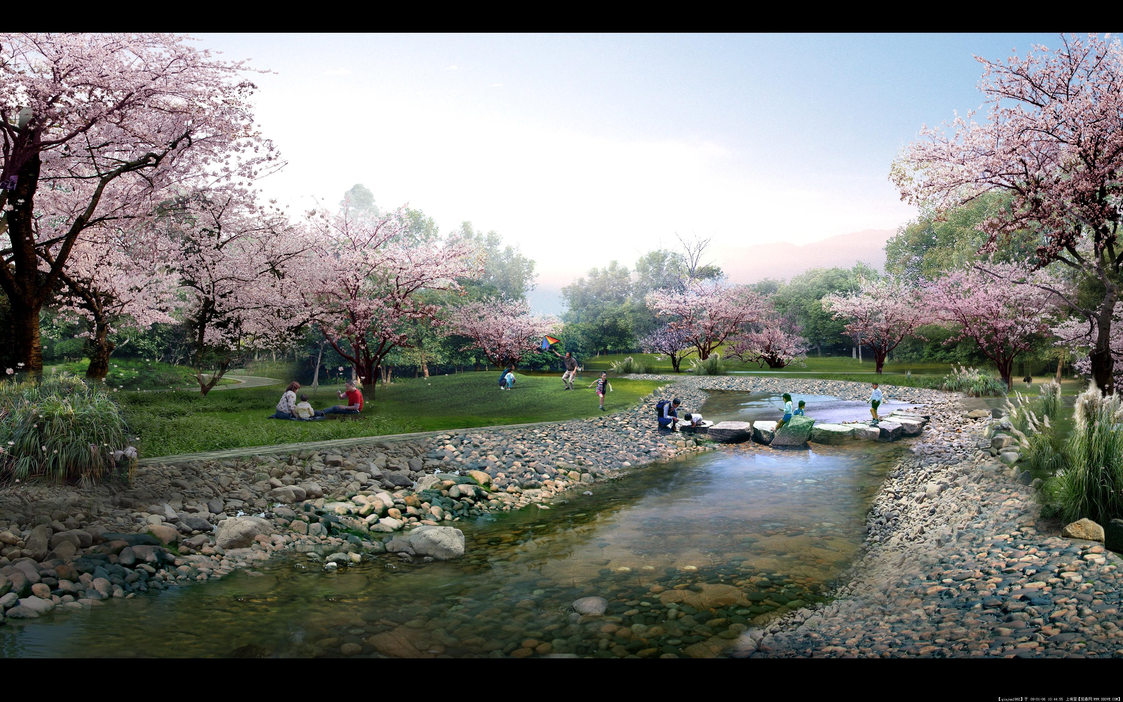 樱花的图片浏览,园林效 果图,公园景观,园林景观设计