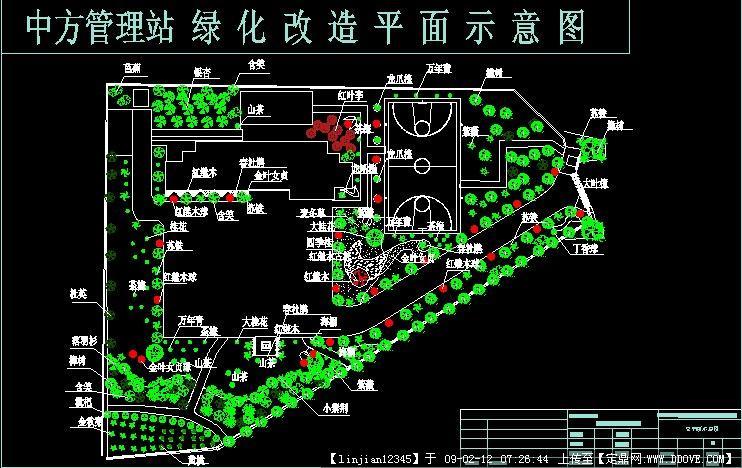 种植平面图