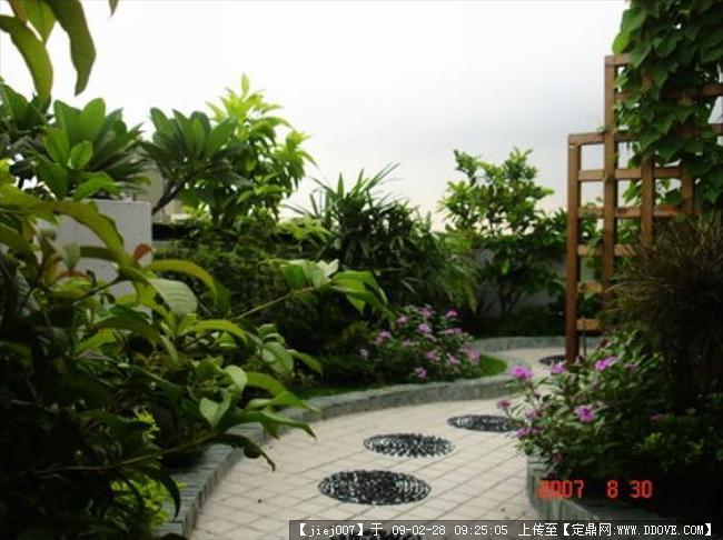 秀秀我家的屋頂花園,太漂亮了-龍崗-萬科第五園(轉)