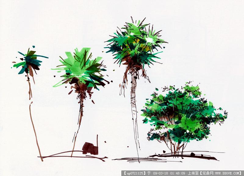 中国手绘第一人沙沛作品