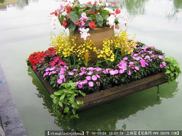 园林植物配置与造景ppt课件