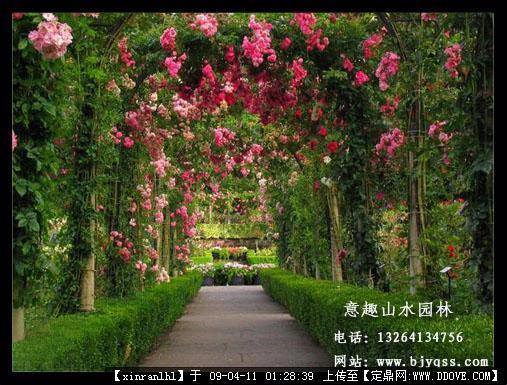 别墅庭院景观-景观花架--欧式