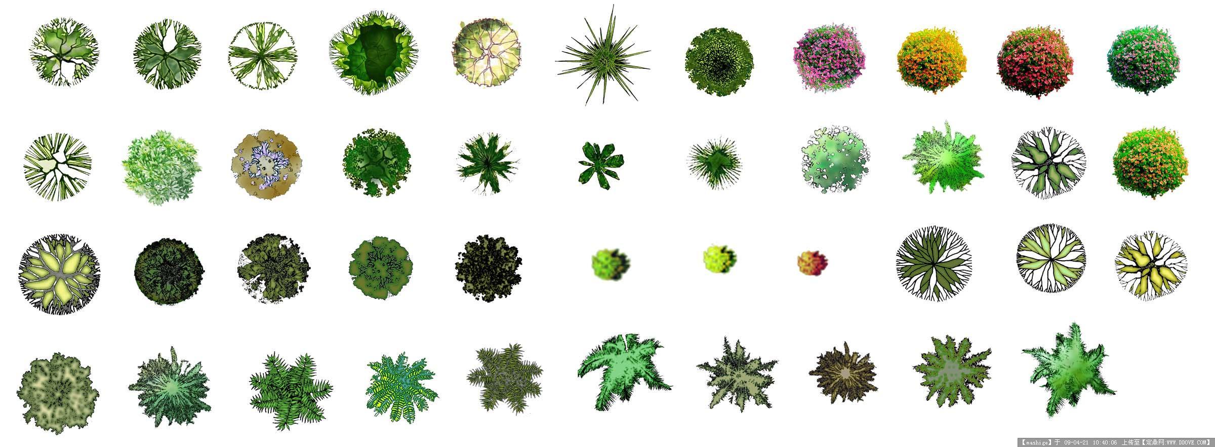 ps图库个人收集-植物,交通工具的图片浏览,配景素材