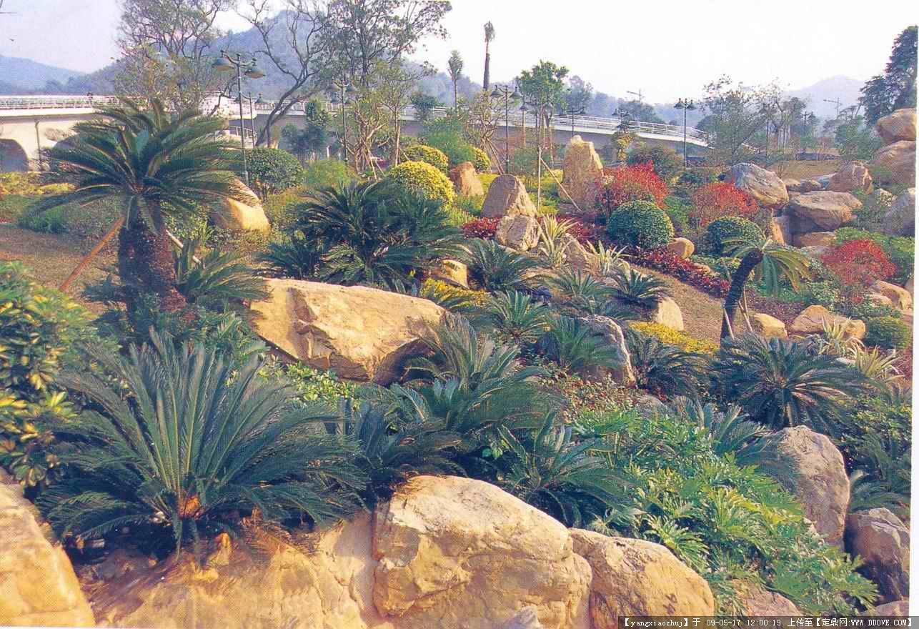 园林小品置石假山实景照片