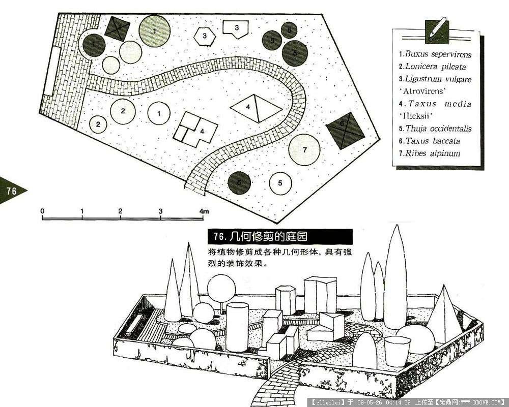 各类庭院设计图