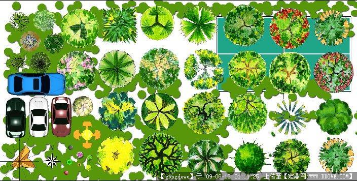 园林植物平面图例; 平面植物(psd分层); ps高清平面树木素材_ps树木
