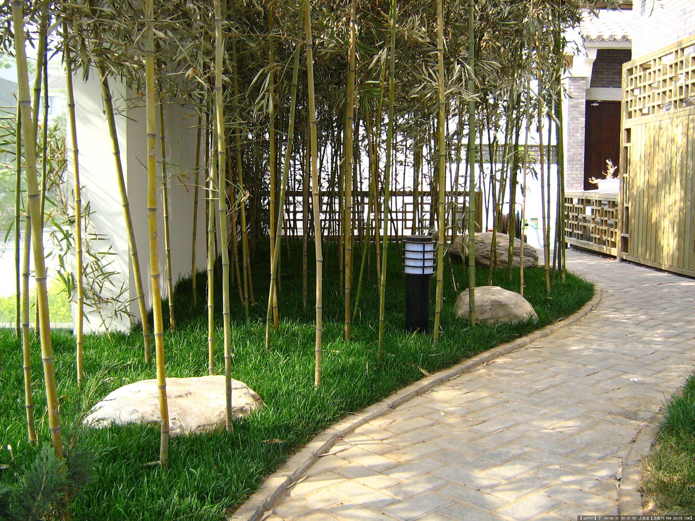 北京博逸达雅庭院景观设计