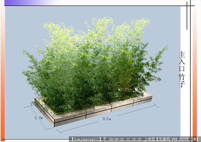 园林竹子立面手绘