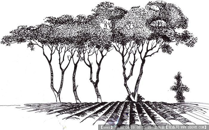 手绘效果图九张的图片浏览,园林效 果图,手绘效果,_.图片