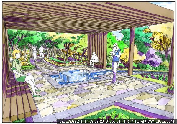 植物造景设计手绘