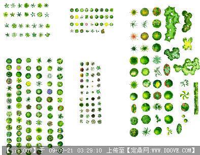 园林树木手绘图例