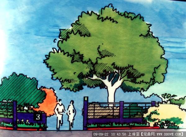 郑州某小学校园景观绿化方案