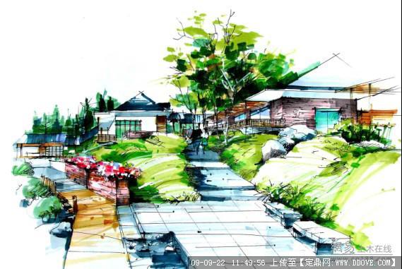 手绘植物平面表现; 重庆最好的园林景观设计学校|齐生园林景观设计