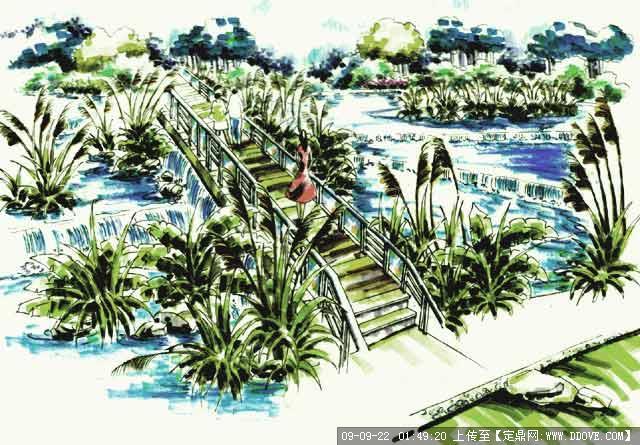 定鼎网 定鼎园林 园林效 果图 手绘效果 南山植物园景观设计手绘