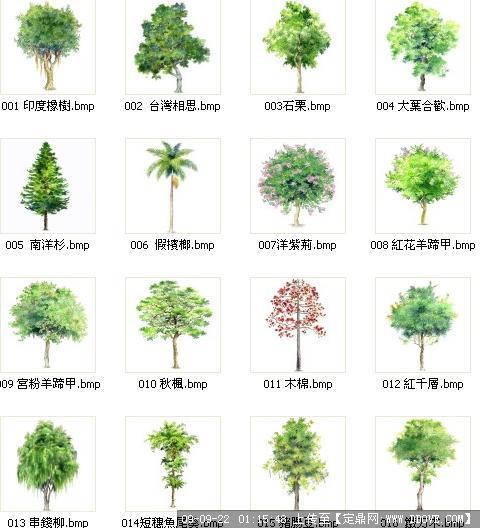 手绘植物平面图例 > 手绘园林平面图例