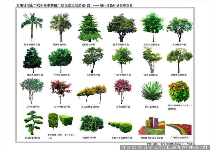 植物配景素材之树木立面