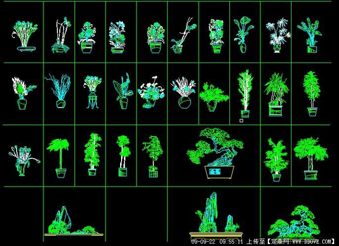 31个精选室内植物cad立面图