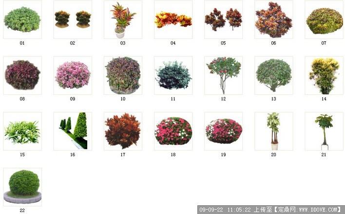 植物素材33灌木素材033a1