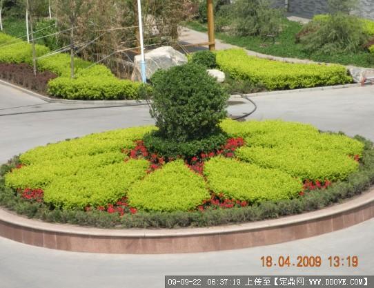 设计,景观设计,园林施工,园林植物,景观图纸,效果图; 圆形花坛设计图