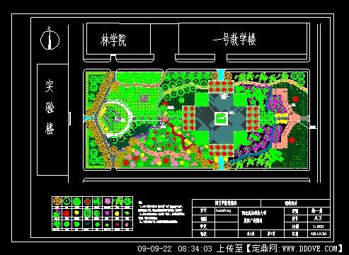 大学校园里的晨读广场景观设计初步方案图