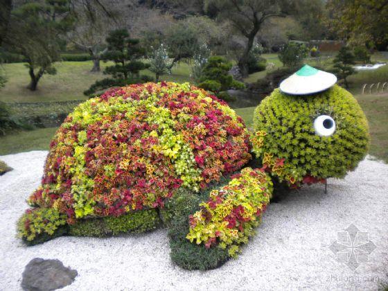 长方形花坛植物设计