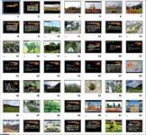 景观植物配置PPT教学课件