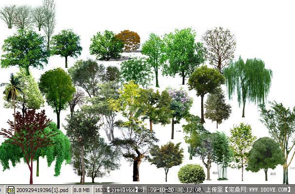 园林效果图后期ps植物分层后期素材的下载地址,配景