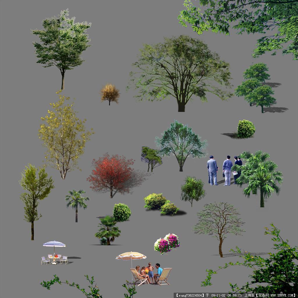 psd园林效果图植物素材