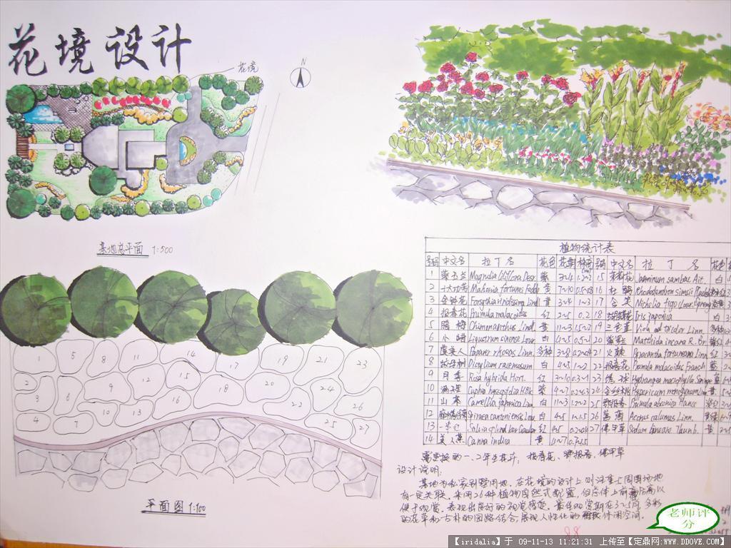 花境手绘平面图; 我的花境设计方案(); 我的花境