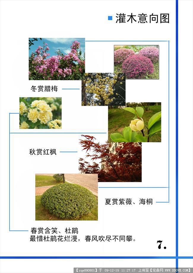 居住区植物配置分析图