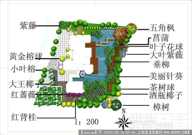 水景小庭院植物配置平面效果图