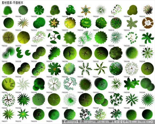 ps素材-植物