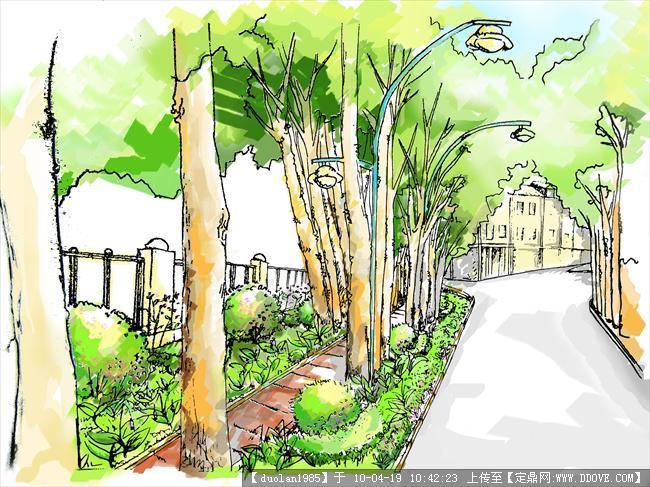 道路绿化局部手绘图的图片浏览,园林效 果图,道路景观图片