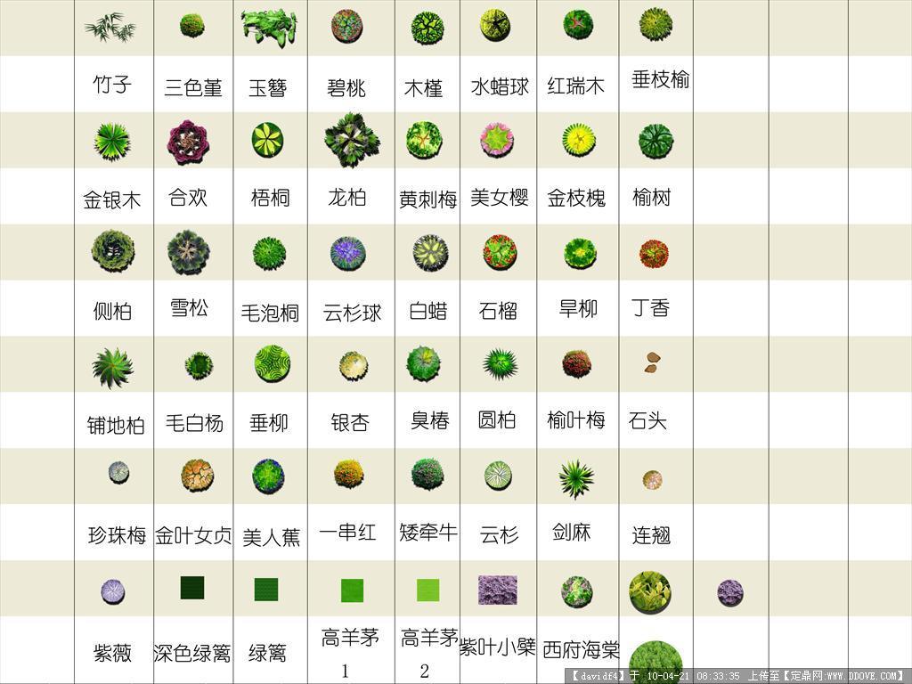 公园景观ps平面图; 平面植物盆栽植物ps高清植物平面