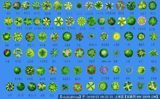 ps植物平面图例