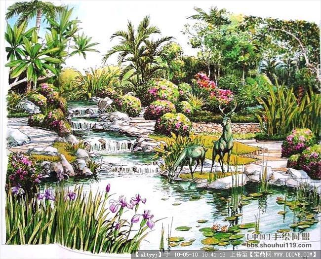 灌木丛素材手绘