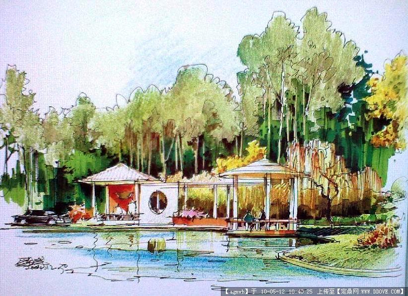 室外手绘,钢笔速写(植物景观)-21张的图片浏览,园林效
