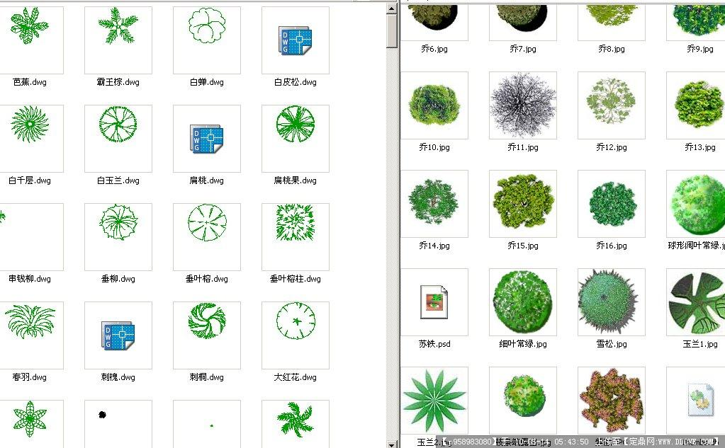 平面植物图例素材(cad225个 ps60个)