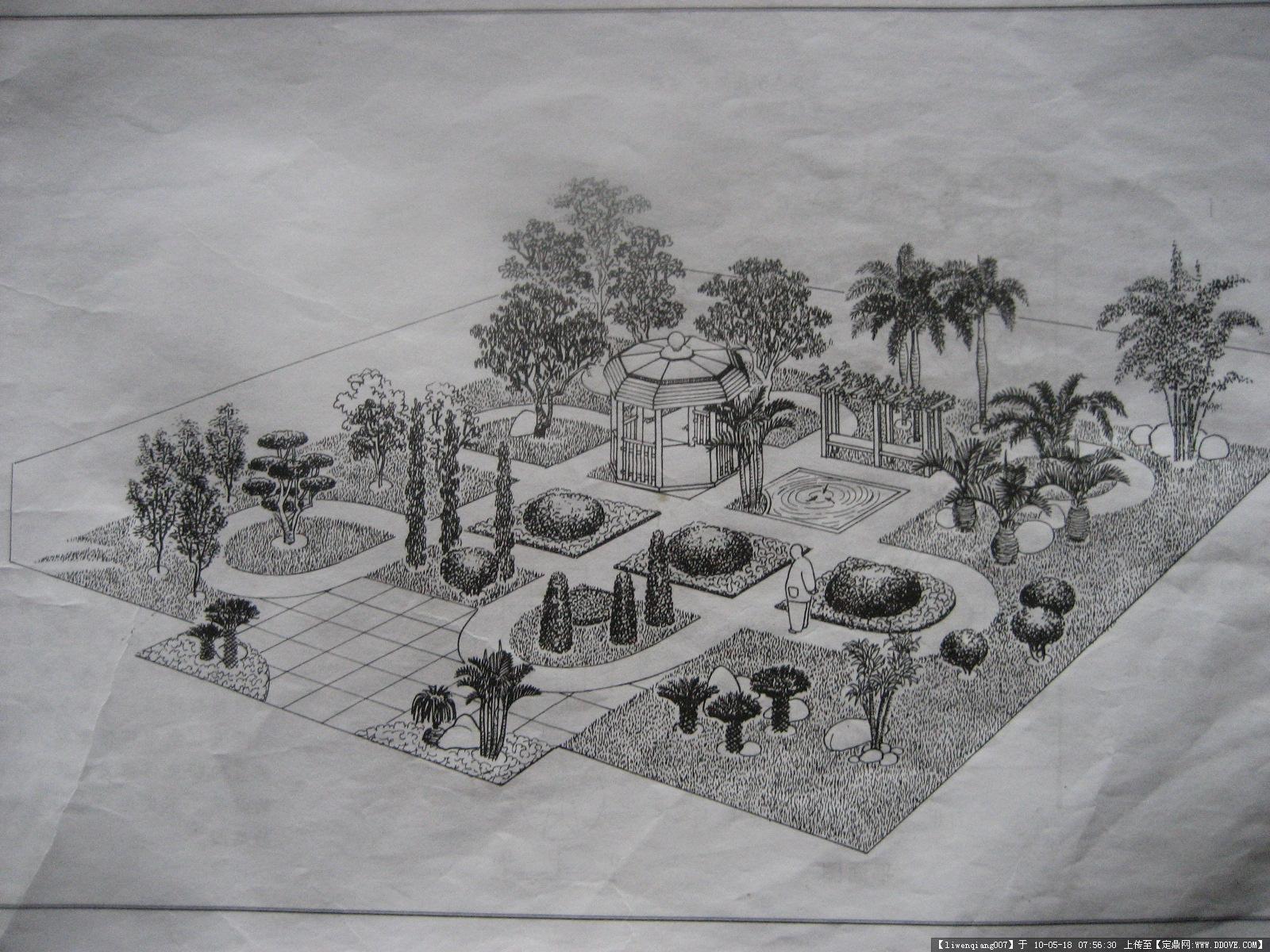 素描农村庭院风景