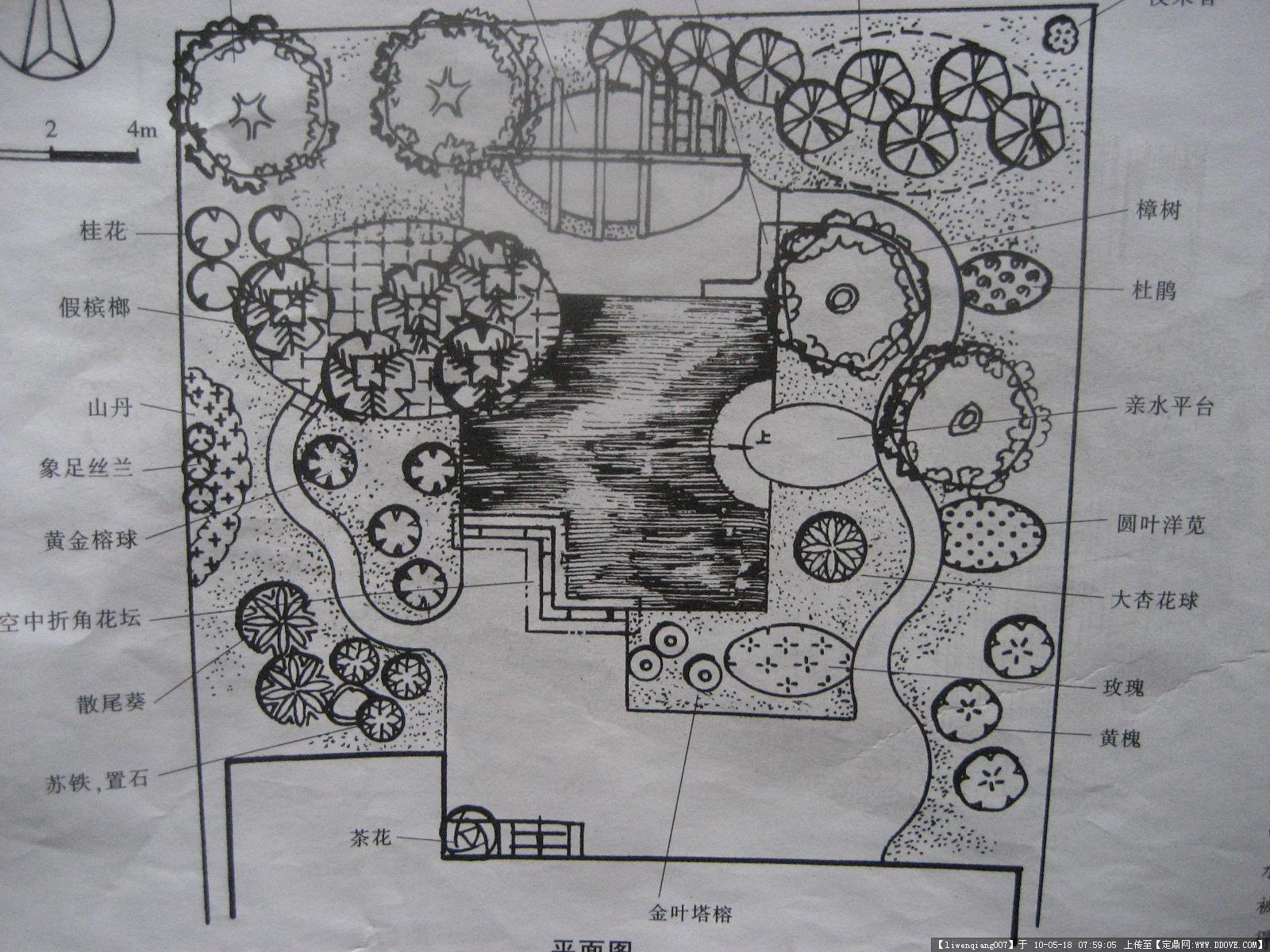 庭院设计图-img_3500.jpg