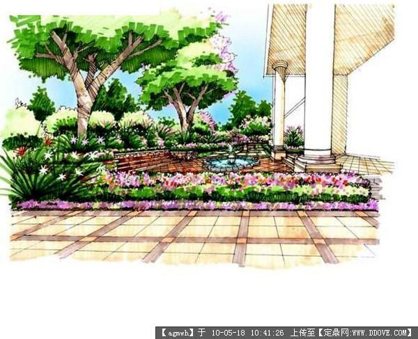 室外手绘,钢笔速写(植物景观)-21张; 园林效果图 某手绘效果图两张1