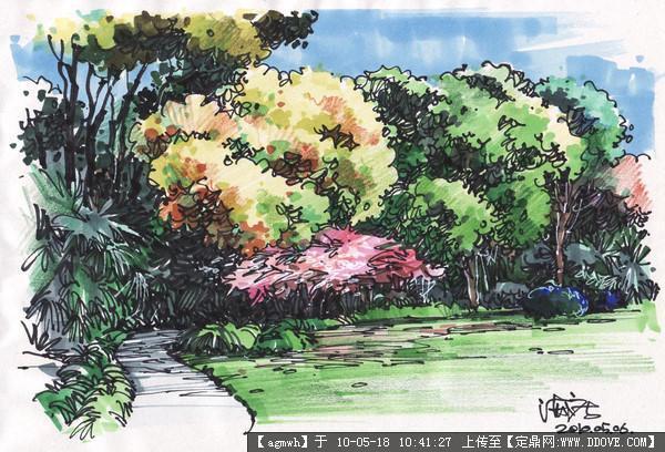 绘 钢笔速写 植物景观 21张的图片浏览,园林效 图,手绘效果,园林