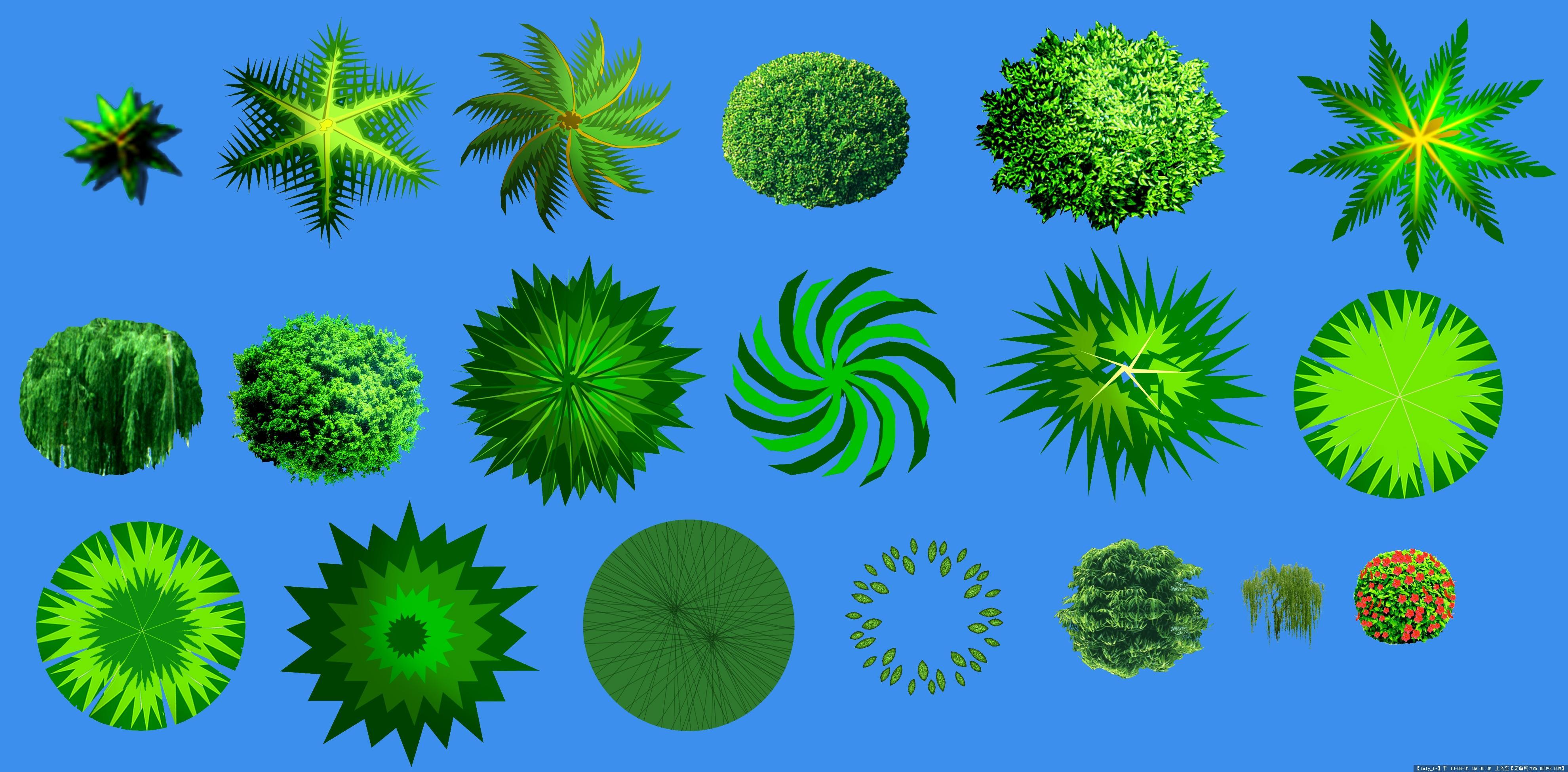 ps平面-植物平面图例素材的图片浏览