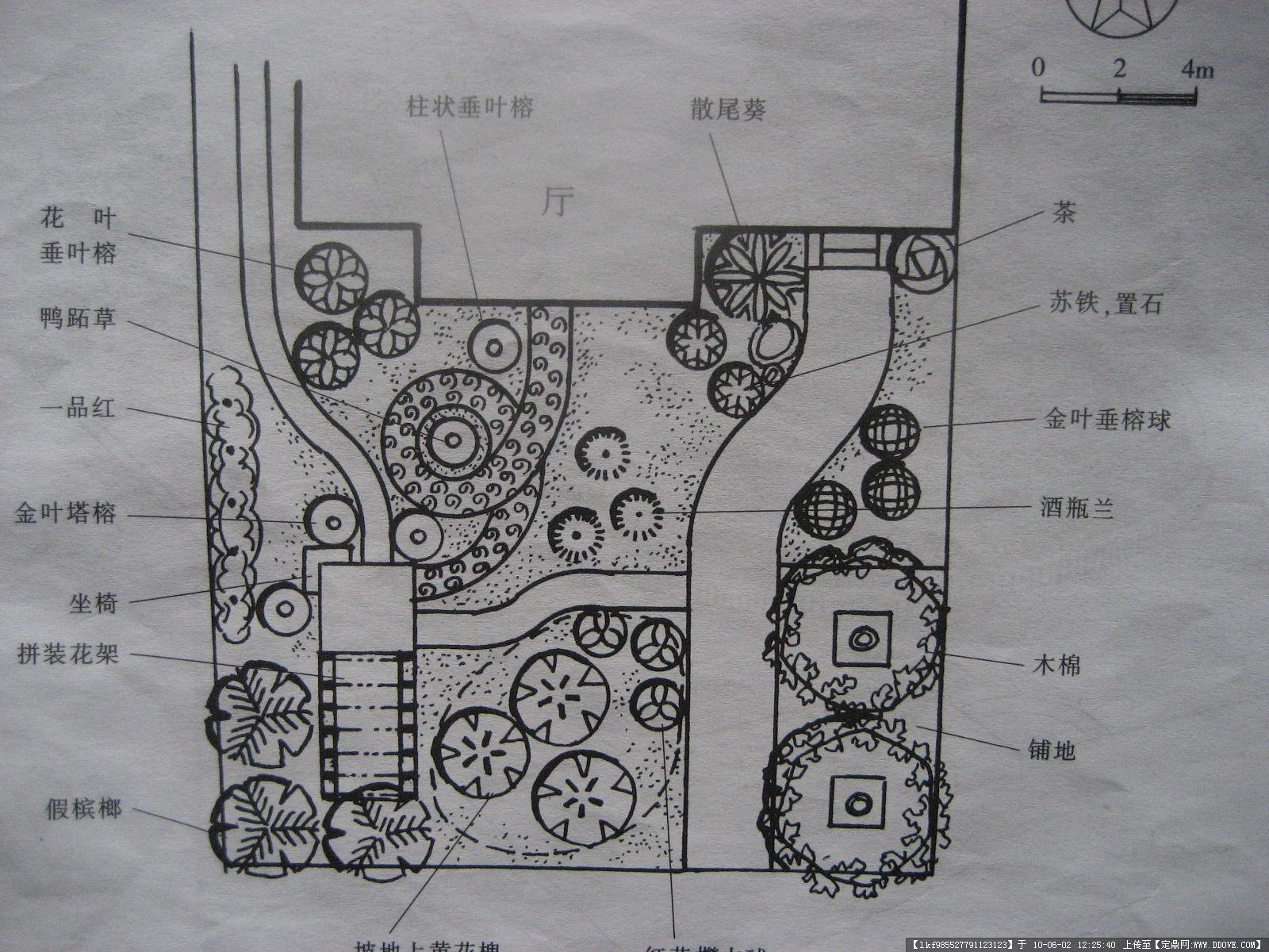 庭院设计(素描图,平面图,效果图!