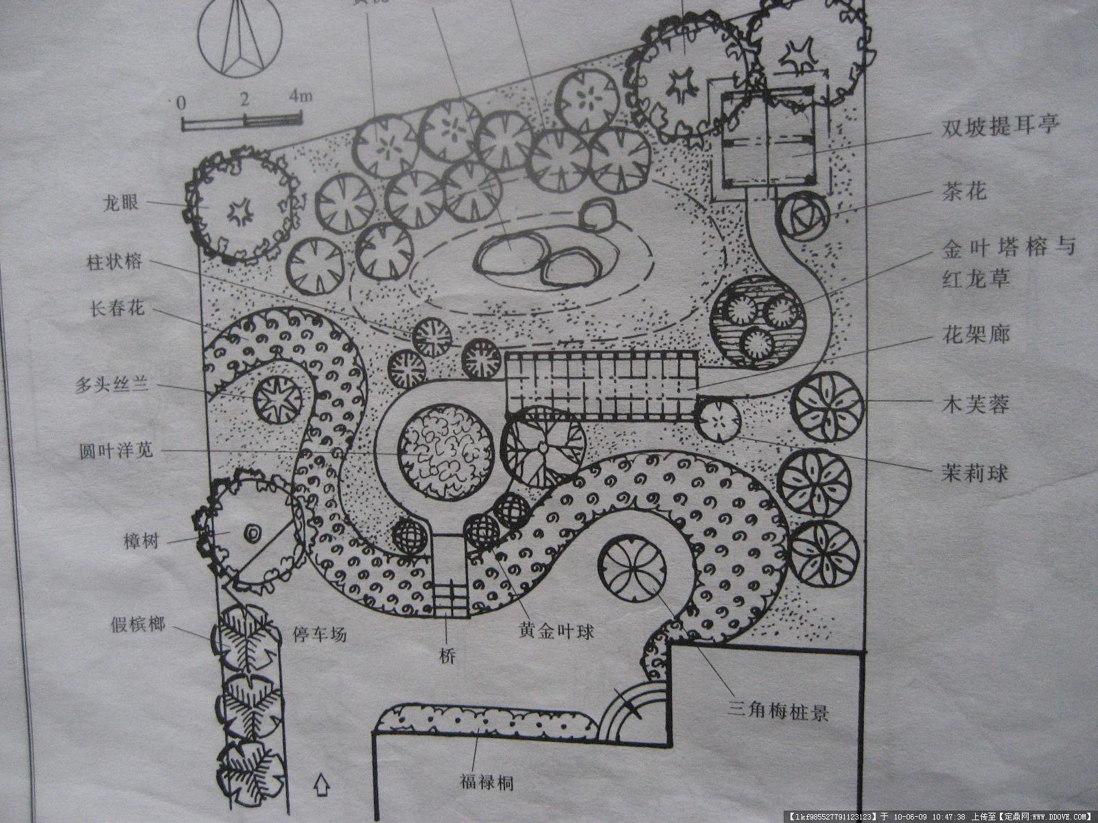 别墅庭院园林设计图纸《平面图,效果图》
