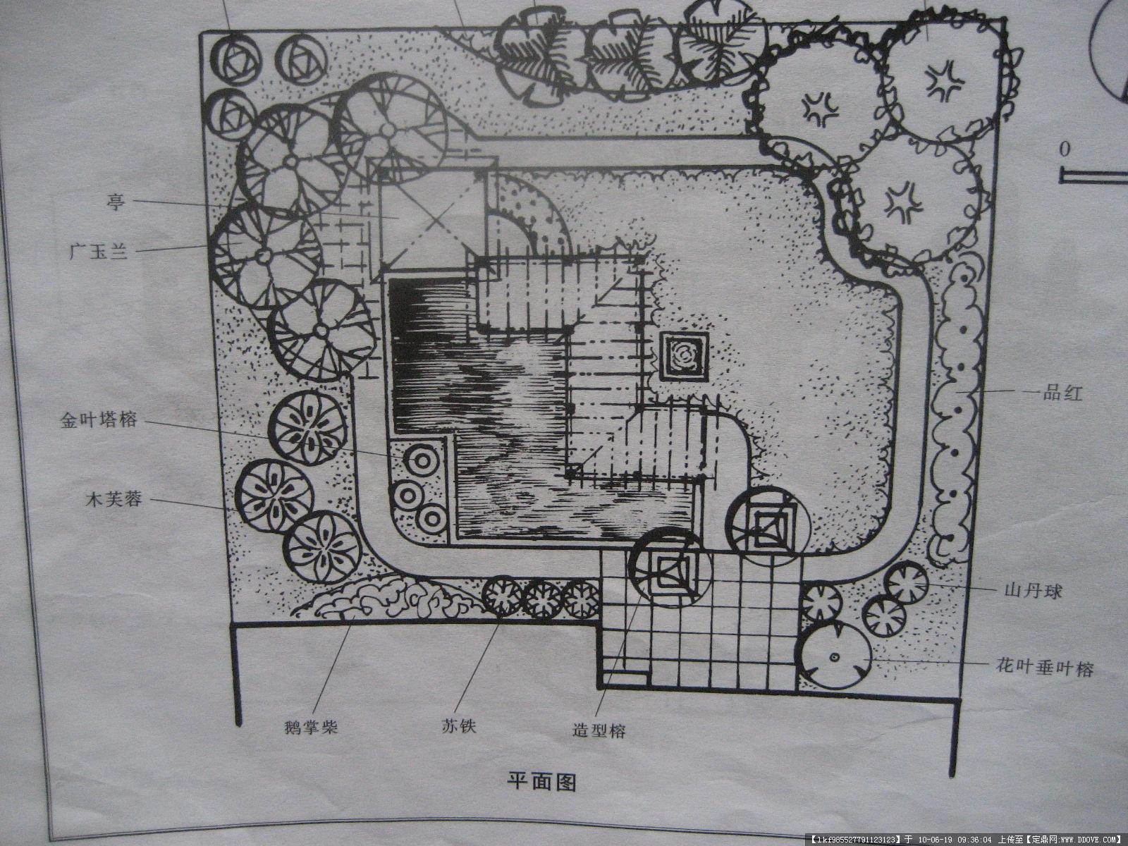 庭院设计经典(平面图,效果图)