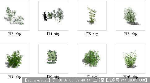 各种竹子素材