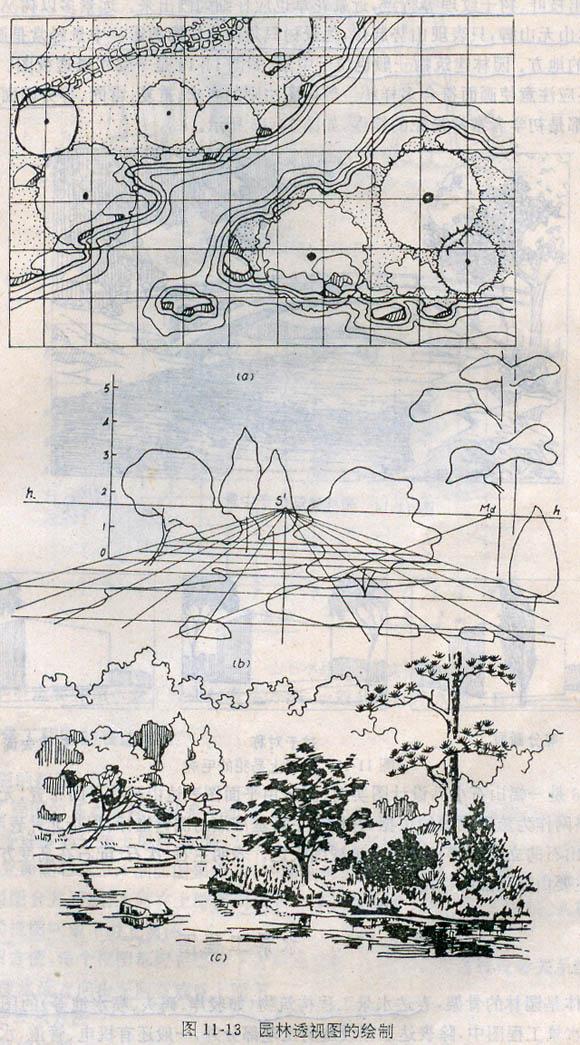 园林透视图