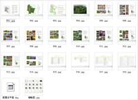 重庆某主题公园植物配置 投标文件(含CAD总平面)